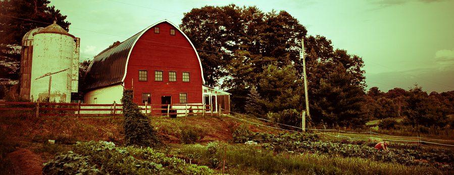 Piney Hill Farm